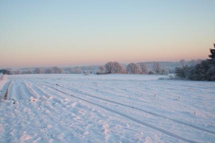 Ausreitgelände im Winter